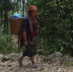 Vietnam0535