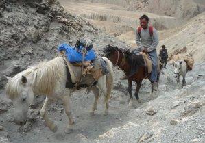 Ladakh_Spiti584